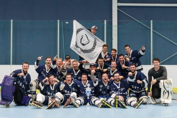 2017 Herren 3 Meister der Landesliga